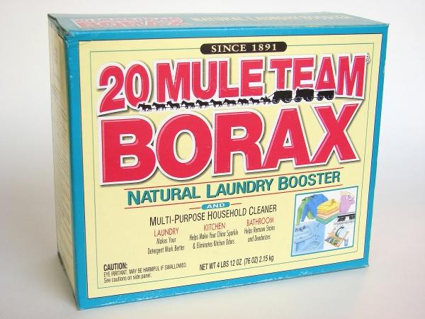 borax as an effective mold remover