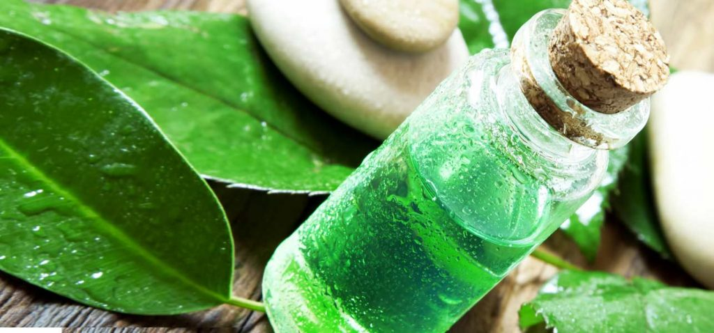tea tree oil for mold and mildew removal