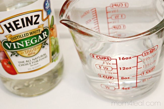 use vinegar to remove mold and mildew