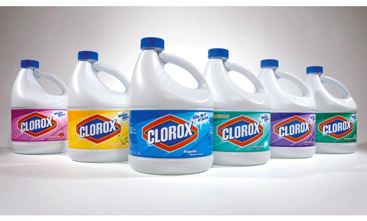 using bleach to kill mold